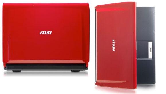 MSI EX300